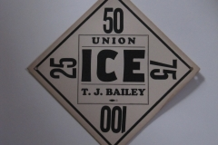 T.J.Bailey Ice