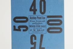 Ashley Pond Ice
